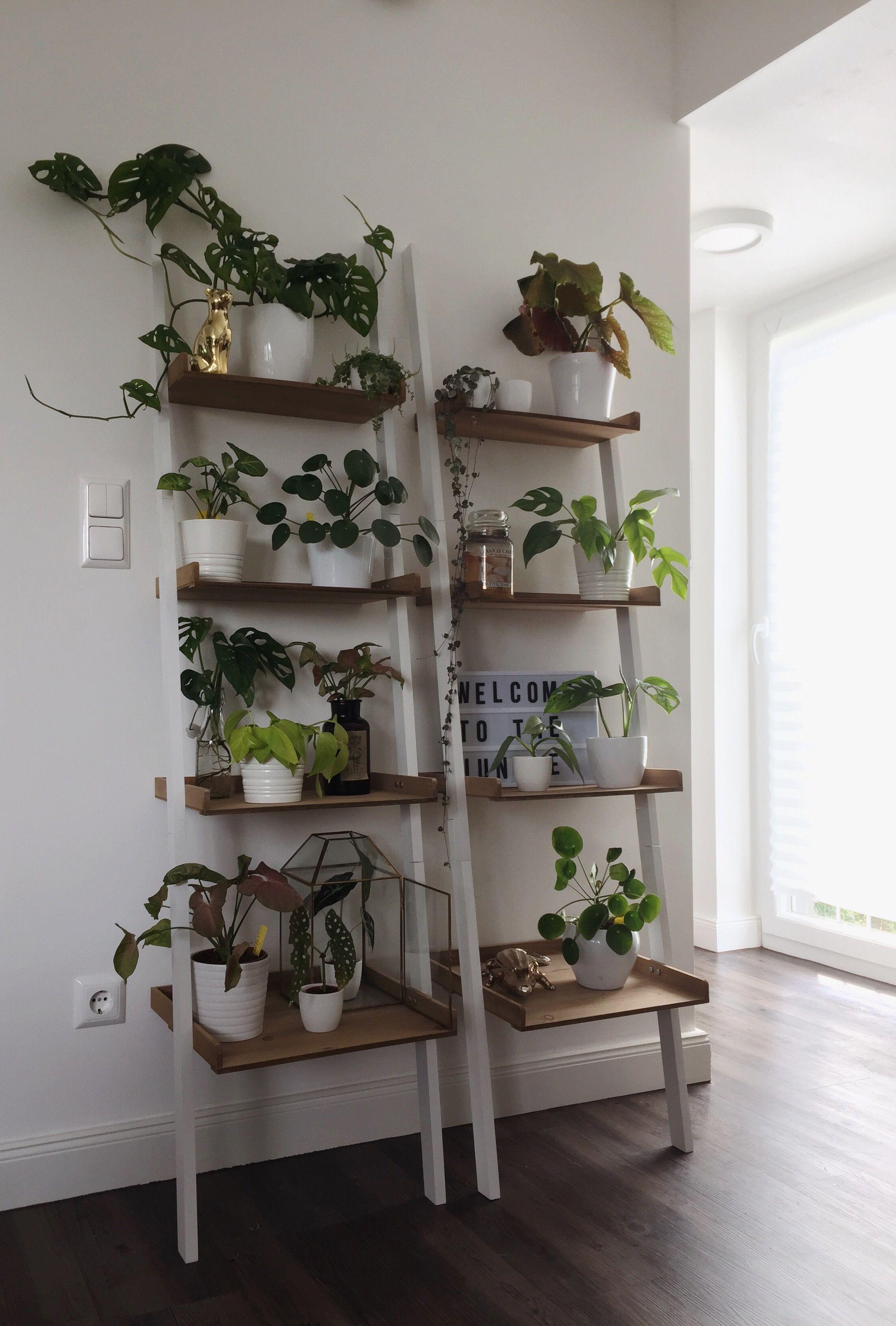 Pflanzenregal plantshelf  Decor, Interior, Home decor