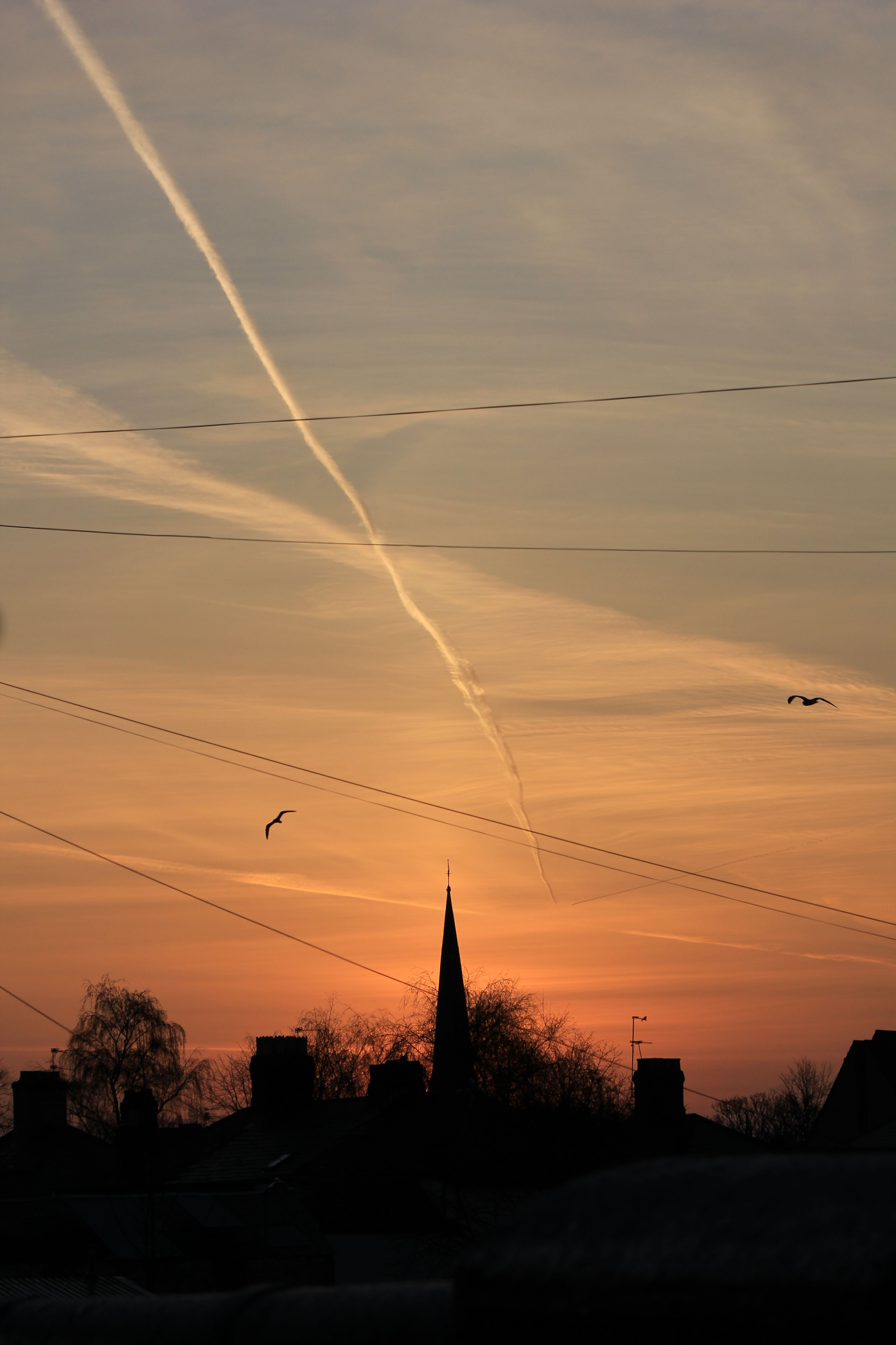 """""""Sunrise"""" Photography"""