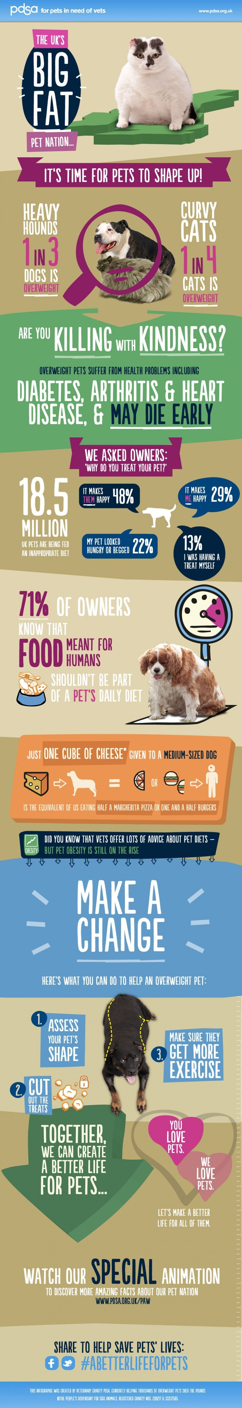 Pet Obesity Not Just a U.S. Problem Pet health, Dog