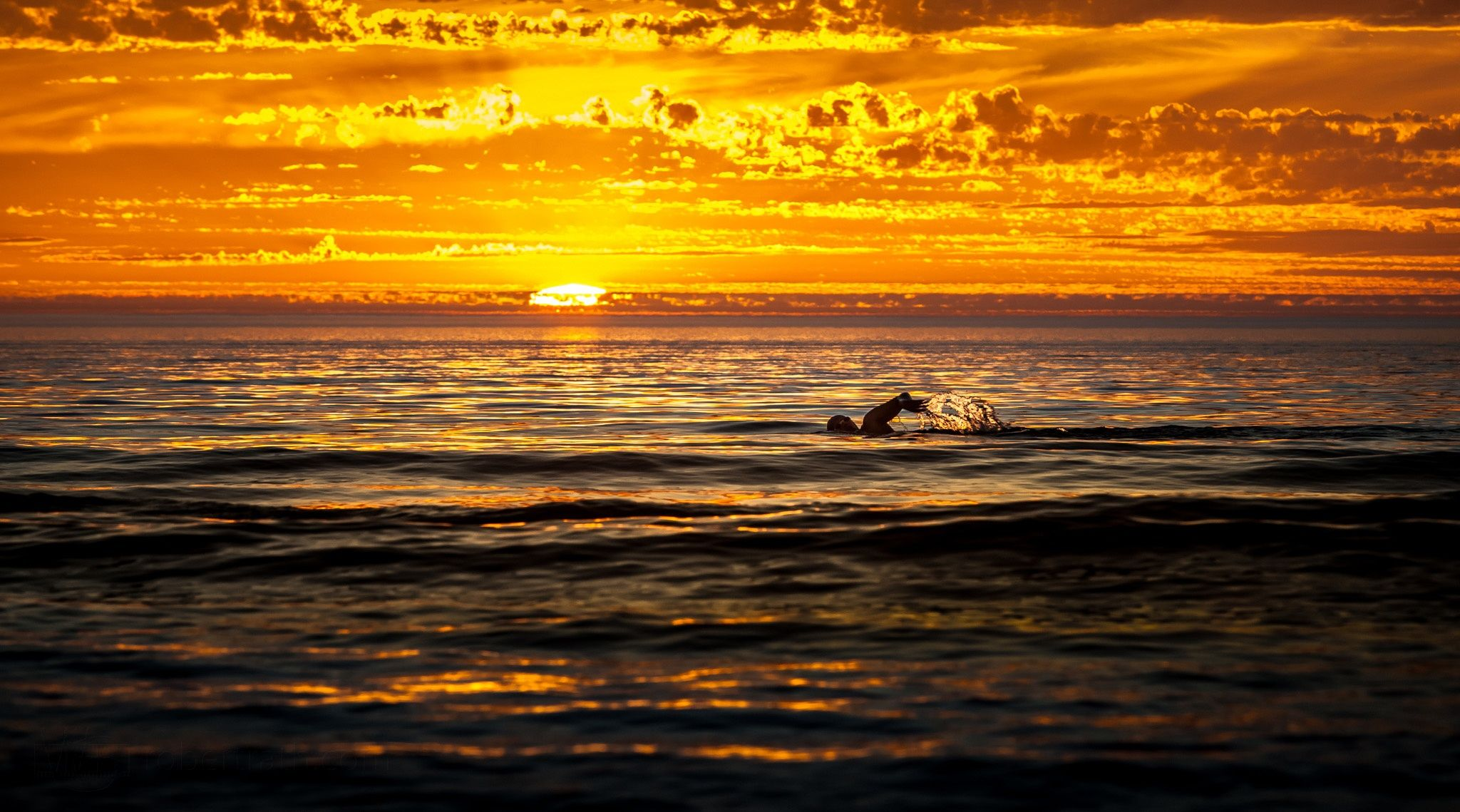 Photograph The Swimmer by Robert Rath on 500px