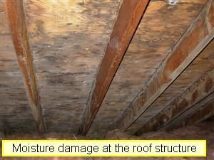 2011 Quote For Attic Mold Remediation In A 3 Bedroom Ranch House 1700 The Attic Area Shows Signs Of A Lack Of Prop Mold Remediation Roof Sheathing Sheathing