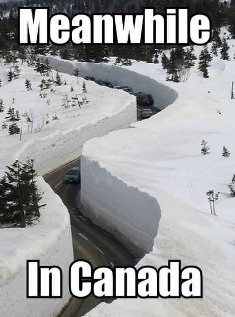 The Funniest Snow Memes Ever Aww Hell Naw Funny Memes Canada