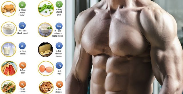 How Much Protein Do You Need To Increase Muscle Mass  Gym
