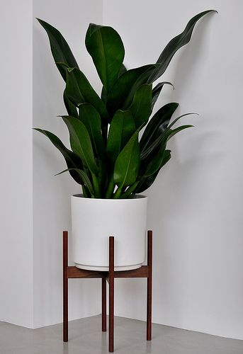 Mcm Planter Stand Small Is 150 Case Study Planter Planters