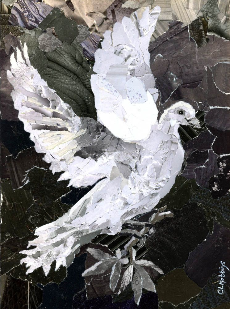 White Dove Torn Paper Collage.