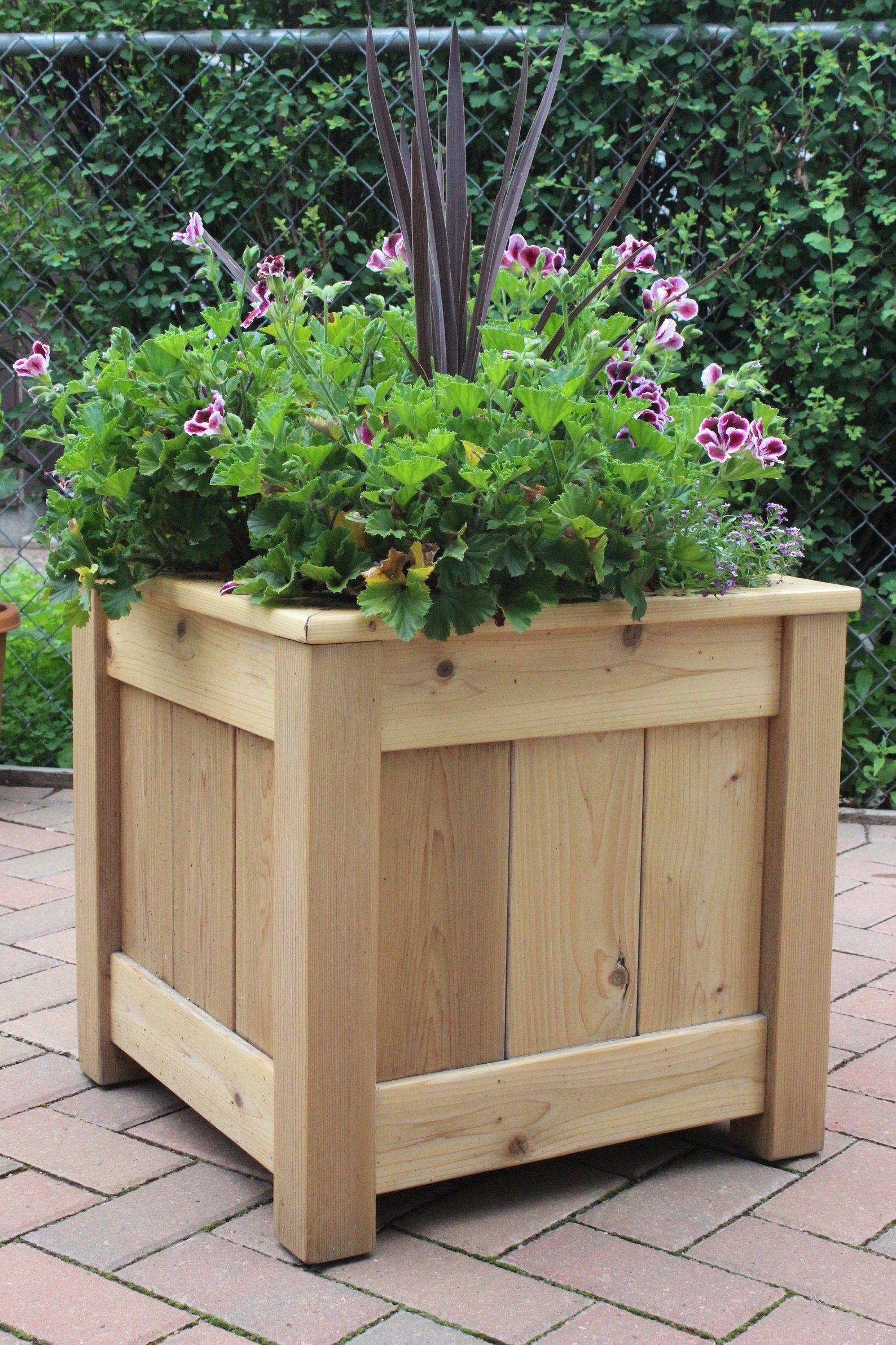 12 New Cedar Mini Planters Box 2 T
