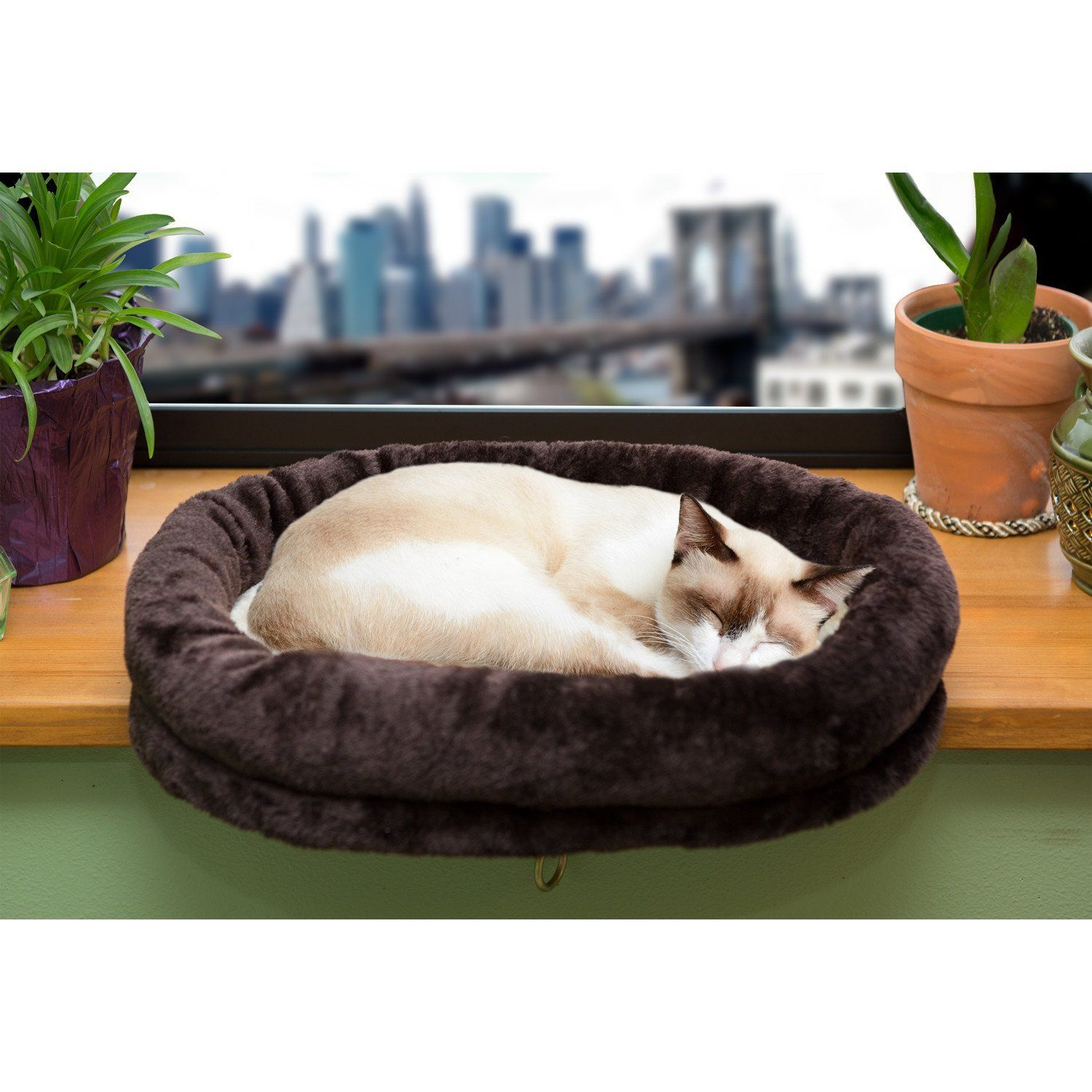 Window bed for cats  furhaven  tiger tough window perch  for more information