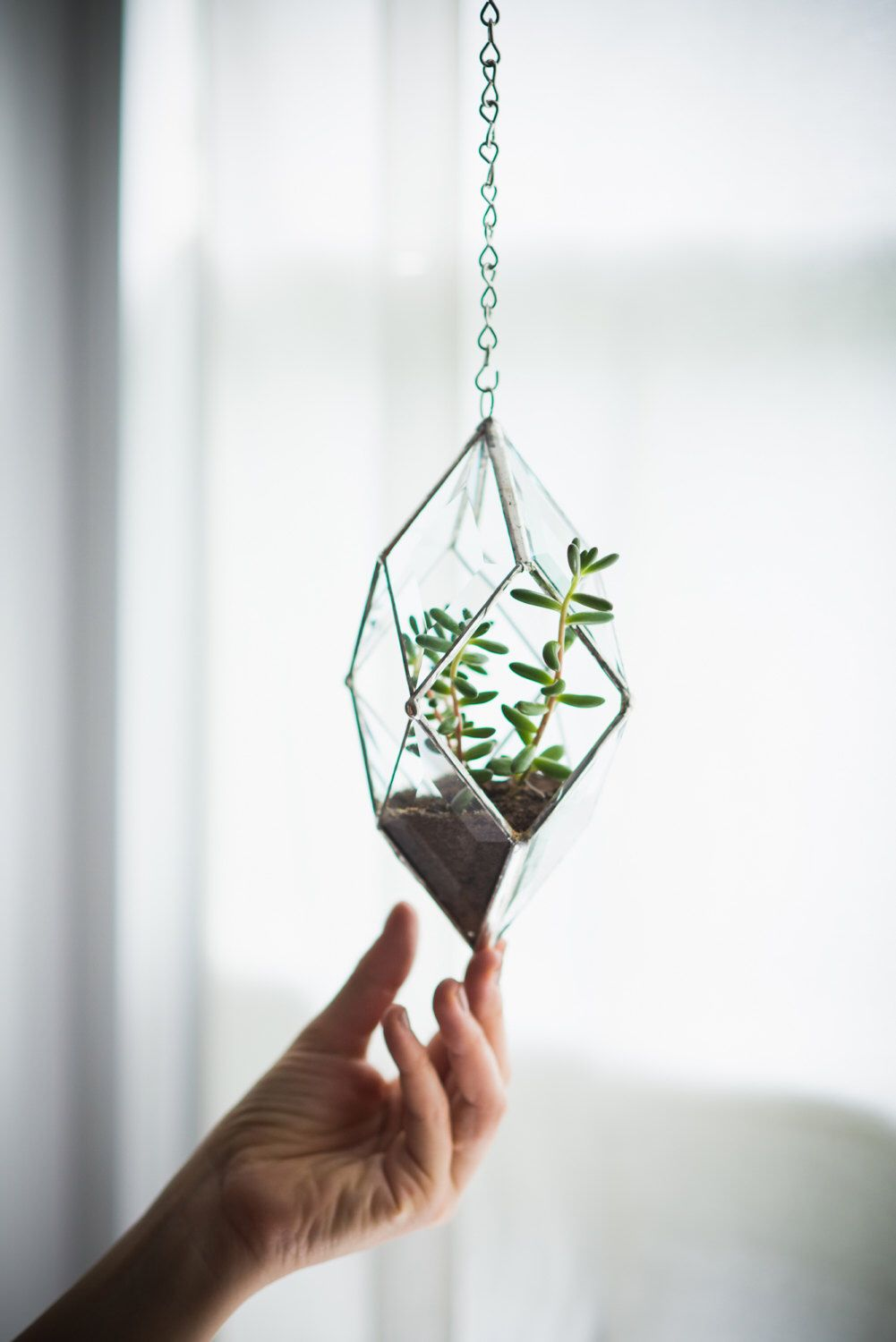 NEW Iridis Prism Terrarium, small -- for air plant terrarium or small succulent -- stained glass -- terrarium supplies -- eco friendly by ABJglassworks on Etsy https://www.etsy.com/listing/201937768/new-iridis-prism-terrarium-small-for-air