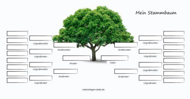Stammbaum In Excel Erstellen Eine Anleitung Chip