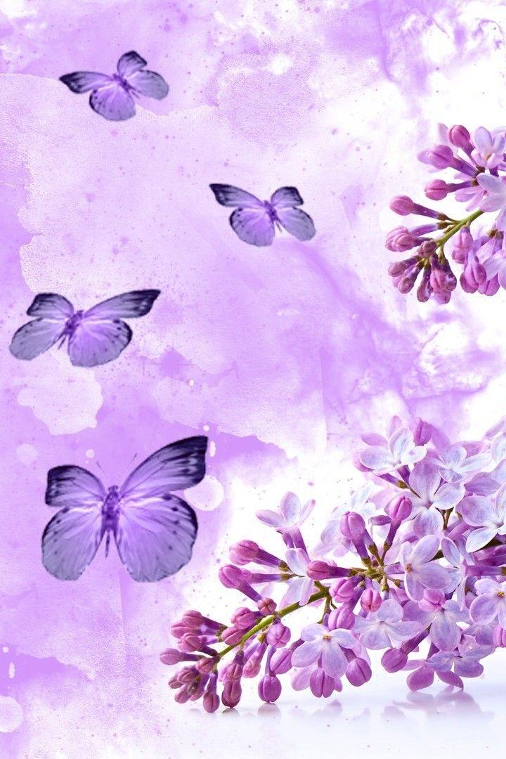wallpaper iphone lock screen aesthetic butterfly ...