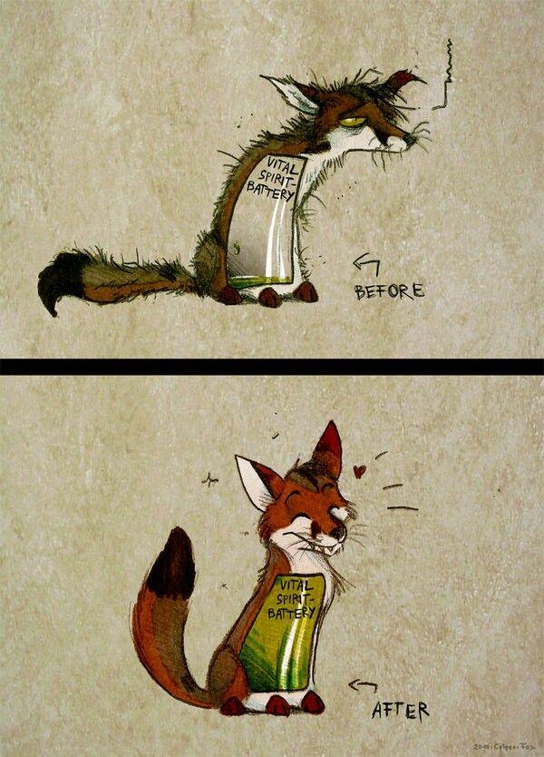 Открытки 100, смешные картинки лиса работает