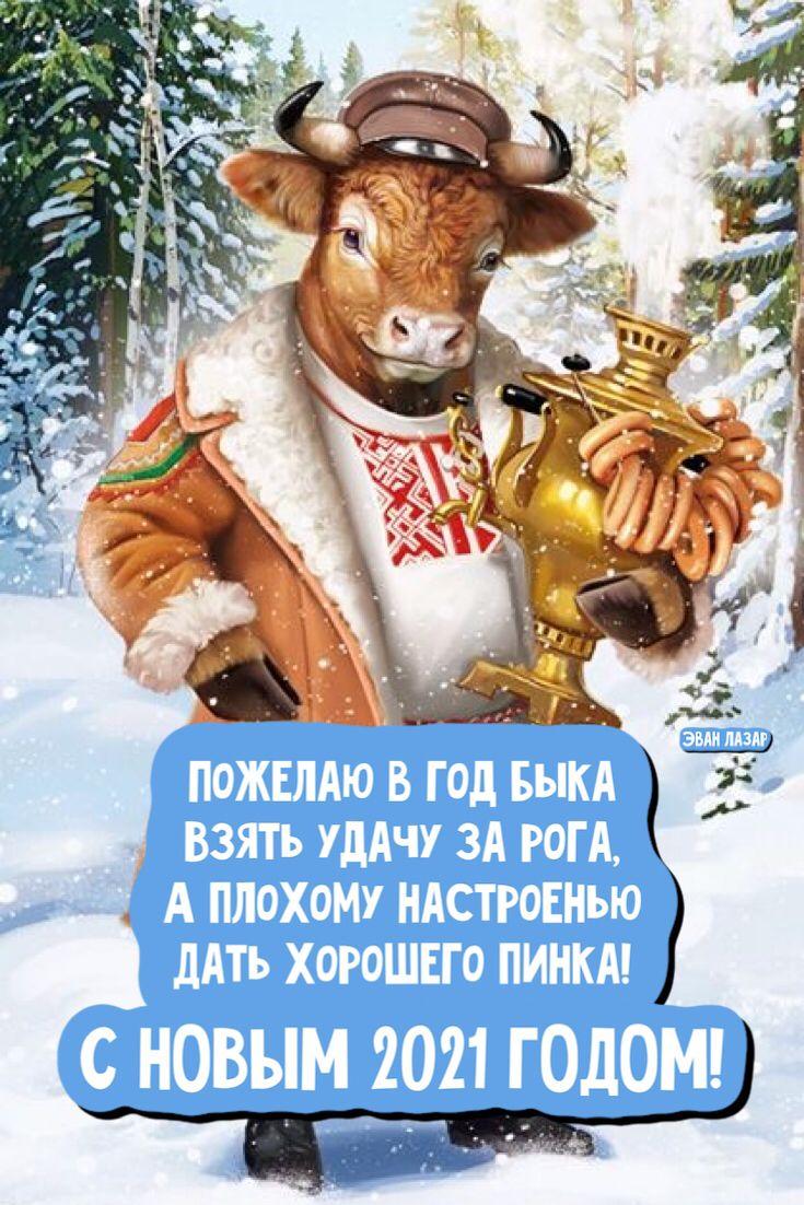 Novogodnie Pozdravleniya Krasivye Otkrytki Kartinki V 2020 G Otkrytki Smeshnye Pozdravitelnye Otkrytki Rozhdestvenskie Pozdravleniya