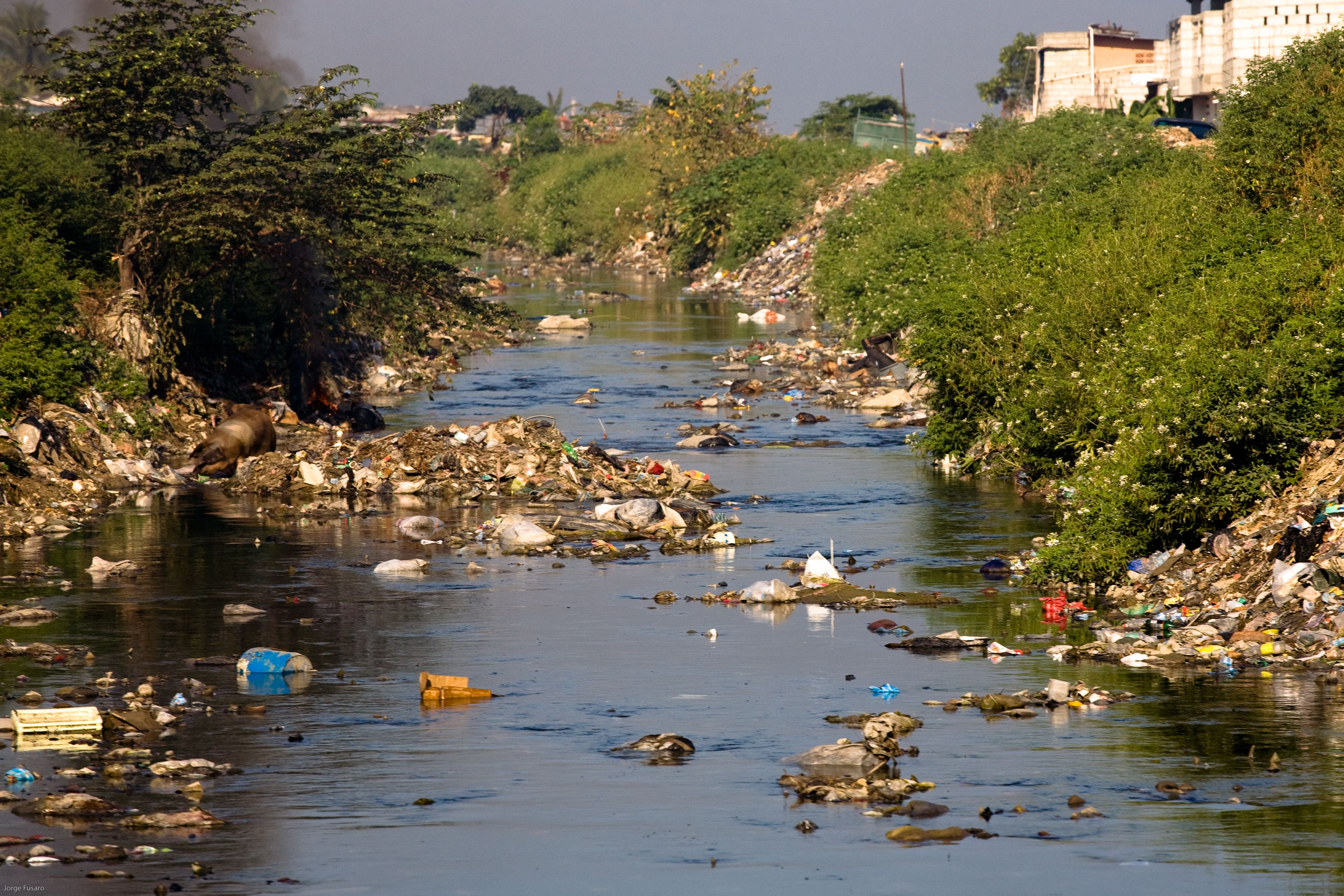 Water Pollution Due To Solid Wastes In The Greater