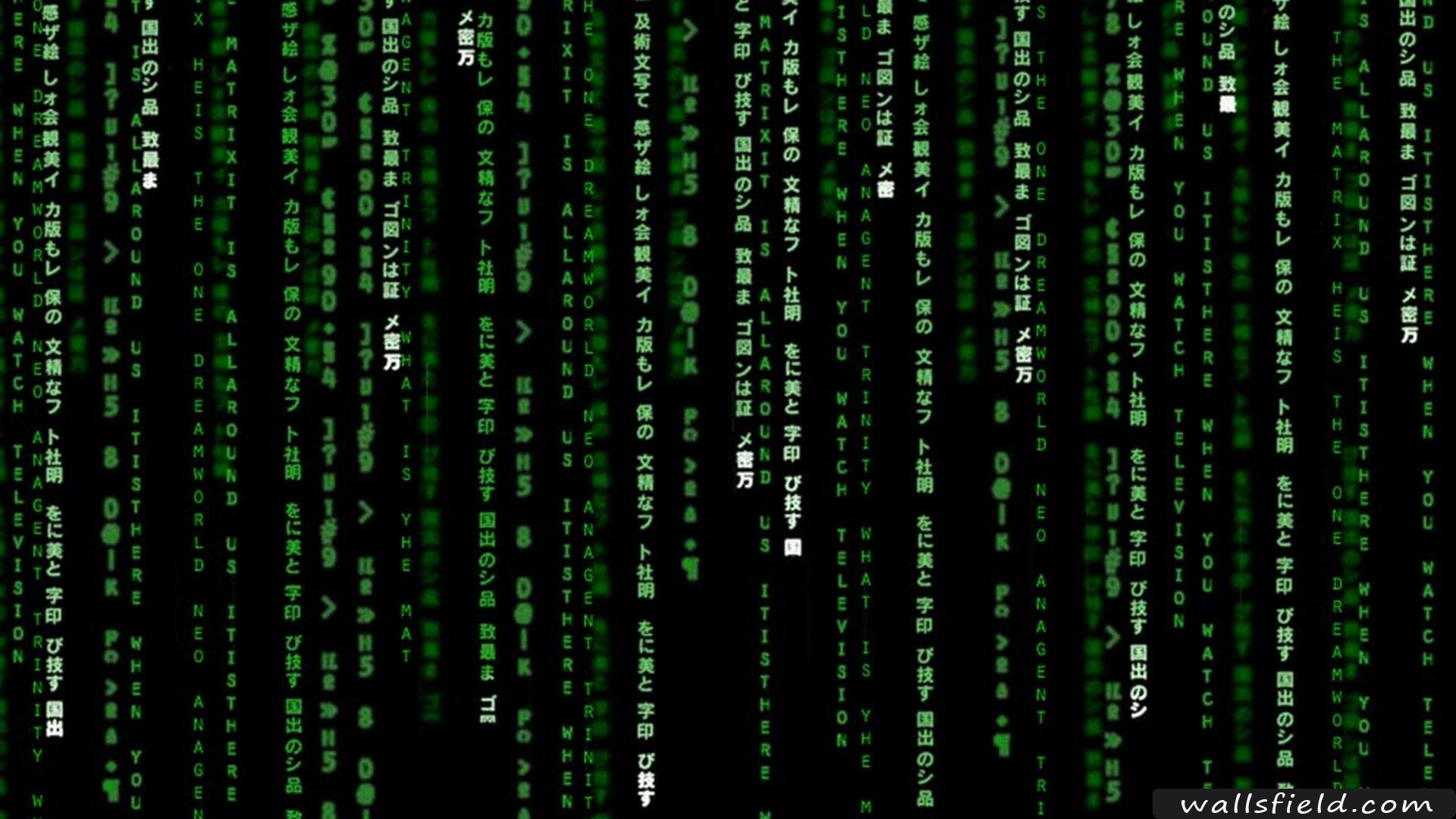 Matrix free hd wallpapers hd wallpaper and desktop backgrounds you can view download and comment on matrix free hd wallpapers for your desktop backgrounds mobile and tablet in different resolutions voltagebd Gallery