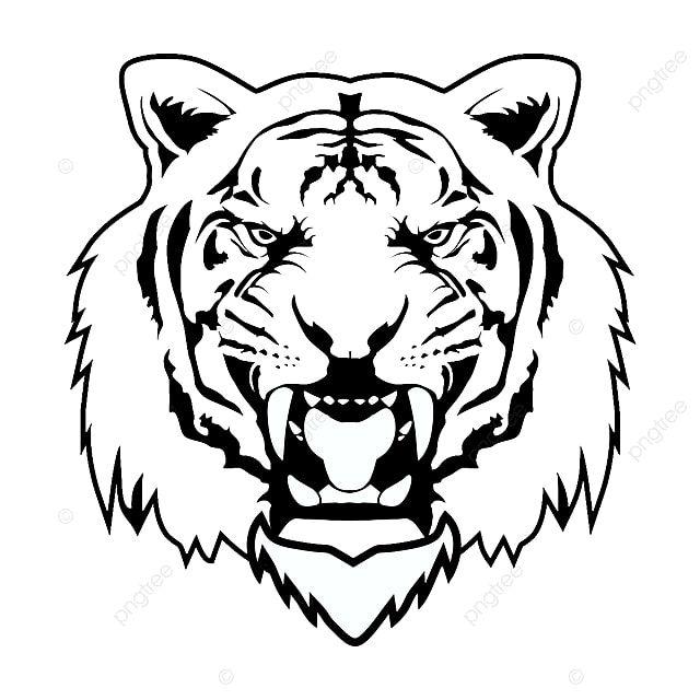 Gambar Vektor Tiger Vektor Harimau Haiwan Png Dan Psd Untuk Muat Turun Percuma Tiger Images Tiger Spirit Animal Tiger Art