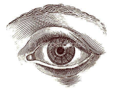 Old engraving illustration of open human eye