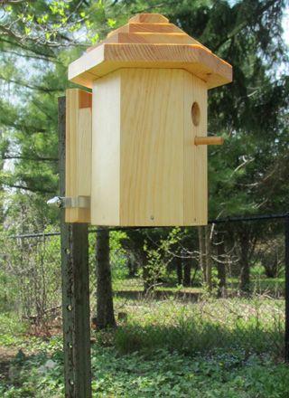Mounting A Birdhouse On A Metal Pole Or T Bar Most Desirable Bird Houses Butterfly Garden Design Garden Design