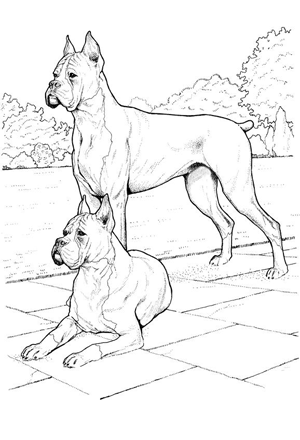 Dog Coloring Pages By Yuckles Dog Coloring Page Dog Sketch Dog Drawing
