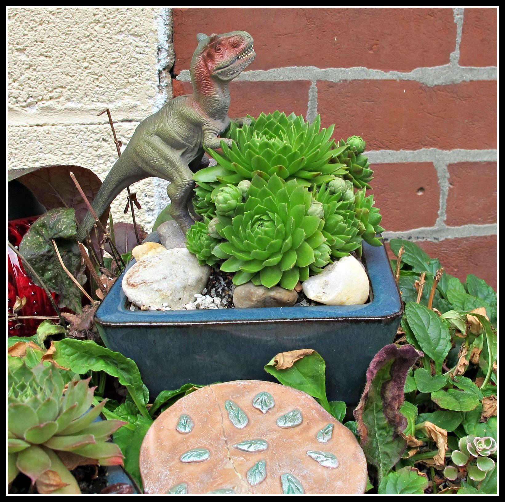 Dinosaur in miniature garden featuring sempervivum succulent. Meancing!