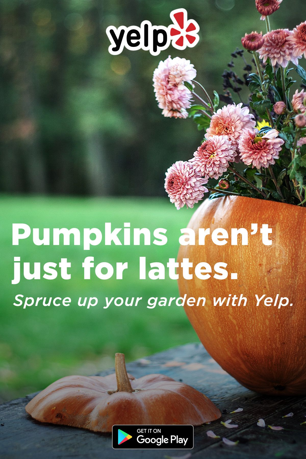 New season, new garden. Download Yelp to find everything