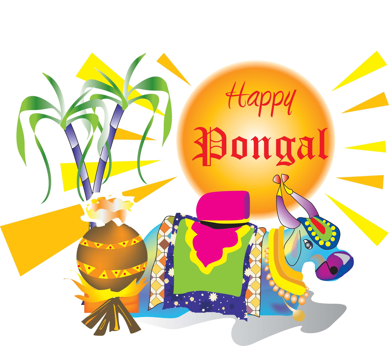 Pongal Festival Makara Sankranti Lohri Festival Photo Gallery