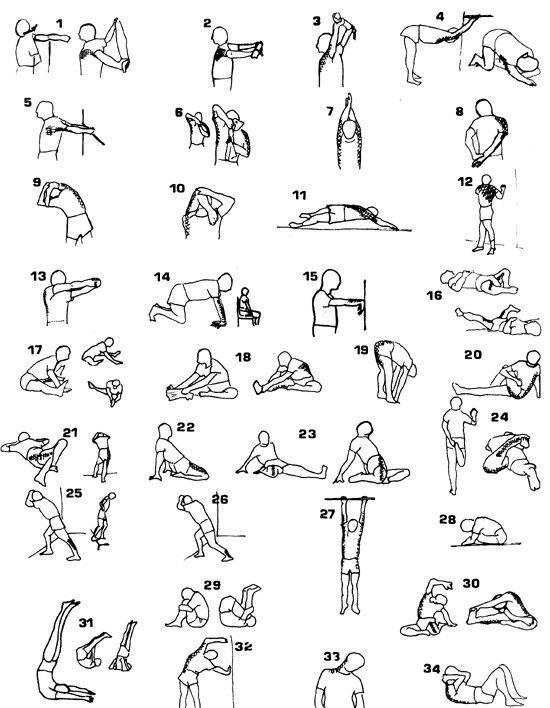 Total body stretching | Stretch | Pinterest | Body stretches