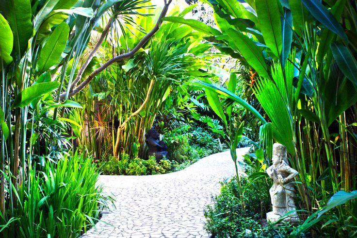 Best Contemporary Tropical Gardens