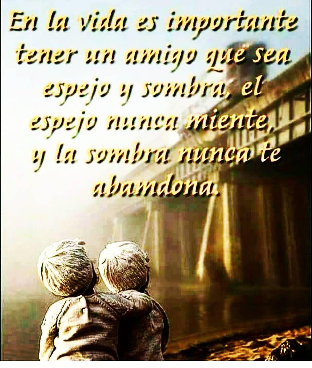 Amigo Sombra Y Espejo Frases De Amistad Citas Frases Y