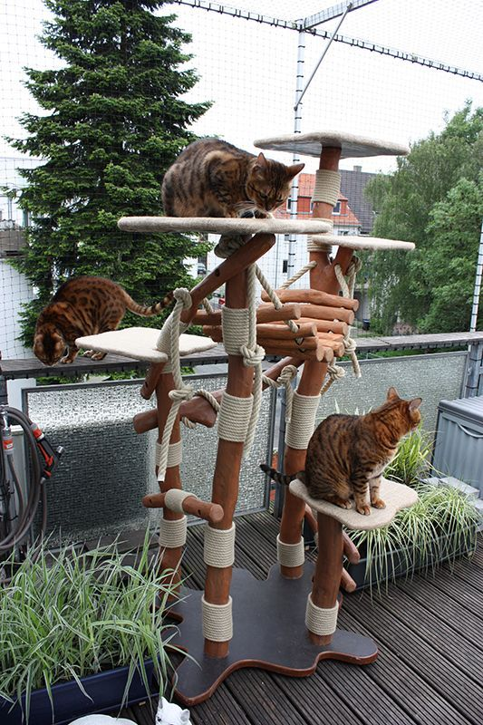 Magiccats Bengal Natur Kratzbaum Outdoor Kratzbaum