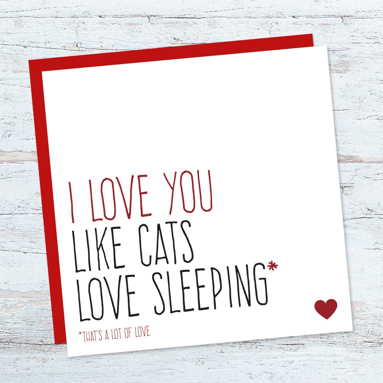 Funny Cat Love Card For Boyfriend Anniversary Cards Birthday Card