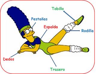 Partes del cuerpo con Marge | Partes del Cuerpo | Pinterest