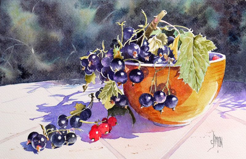 Aquarelle Cassis Gradilles Joel Simon Aquarelle Fruits