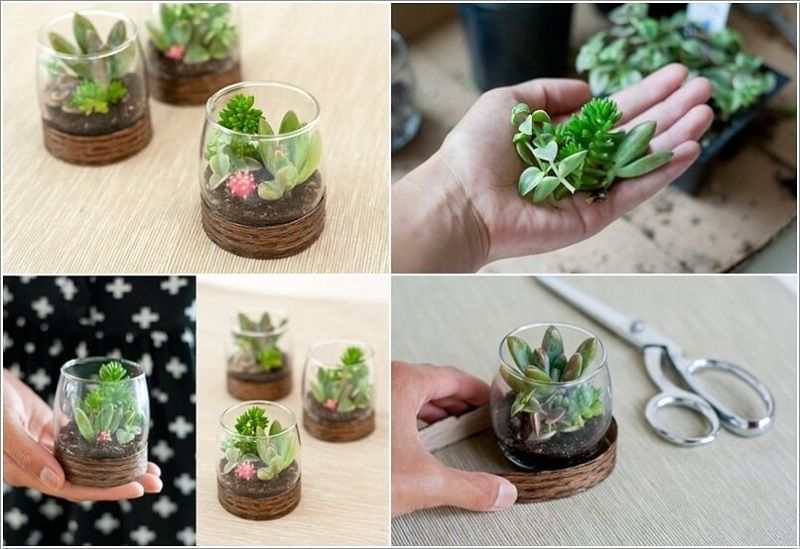 25 Adorable Miniature Terrarium Ideas For You To Try Succulent