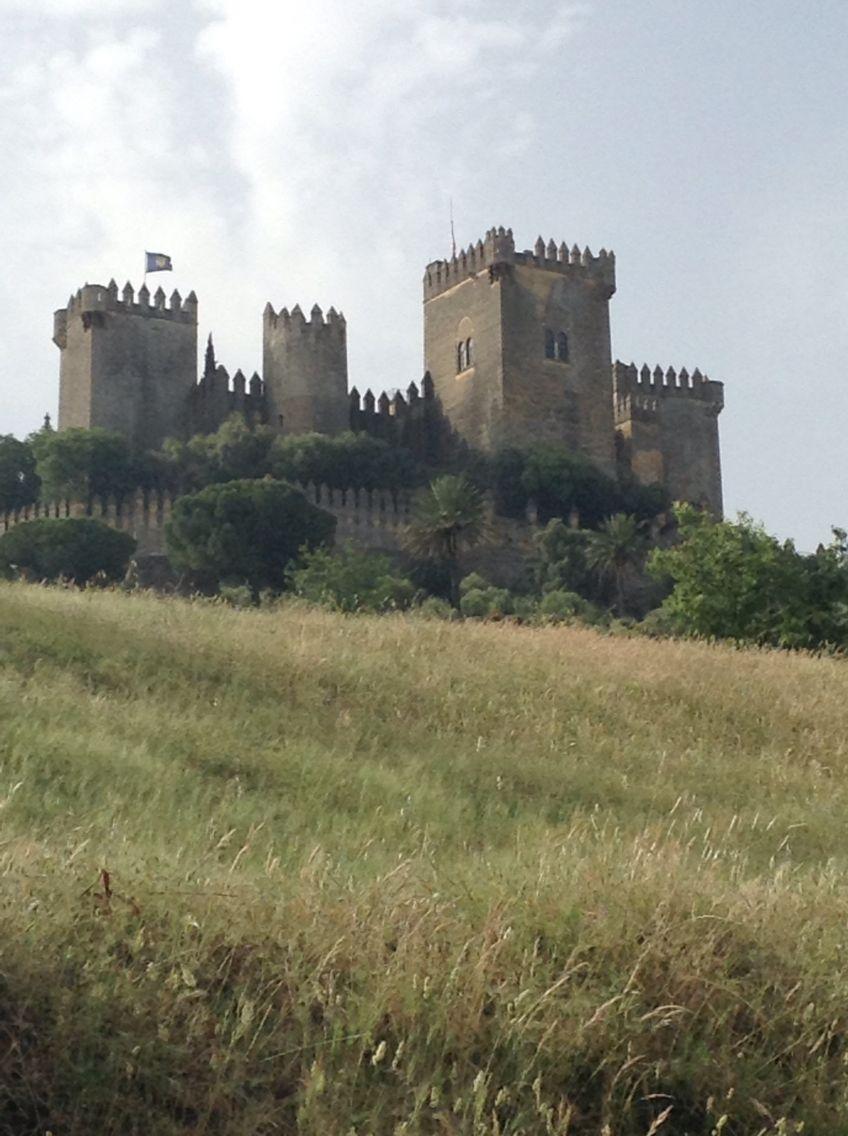 Almodóvar en Córdoba