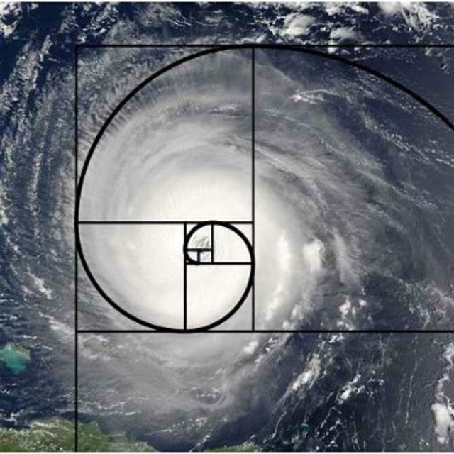 :green_heart: Love that Geometry! #mathiseverywhere #geometry #fibonaccisequence