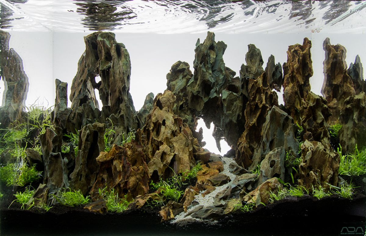 Aquascape No 3 Ada 45p Aquarium Landscape Aquascape Design Aquascape