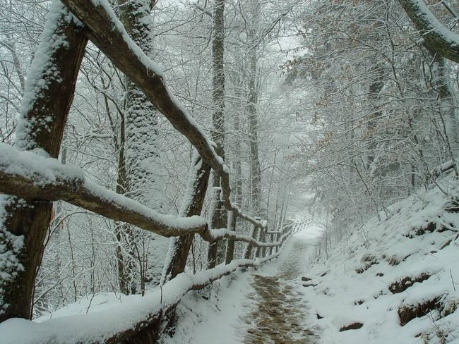 5 Things To Do In Pigeon Forge During Winter Seasons Of