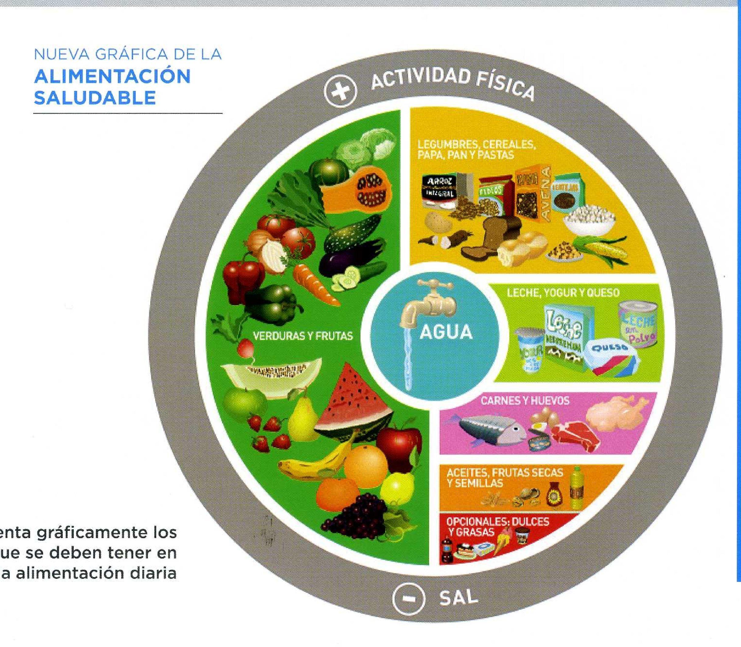 Nueva gráfica de la alimentación saludable. Gráfico