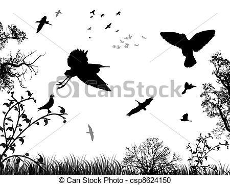 Black And White Art Nature