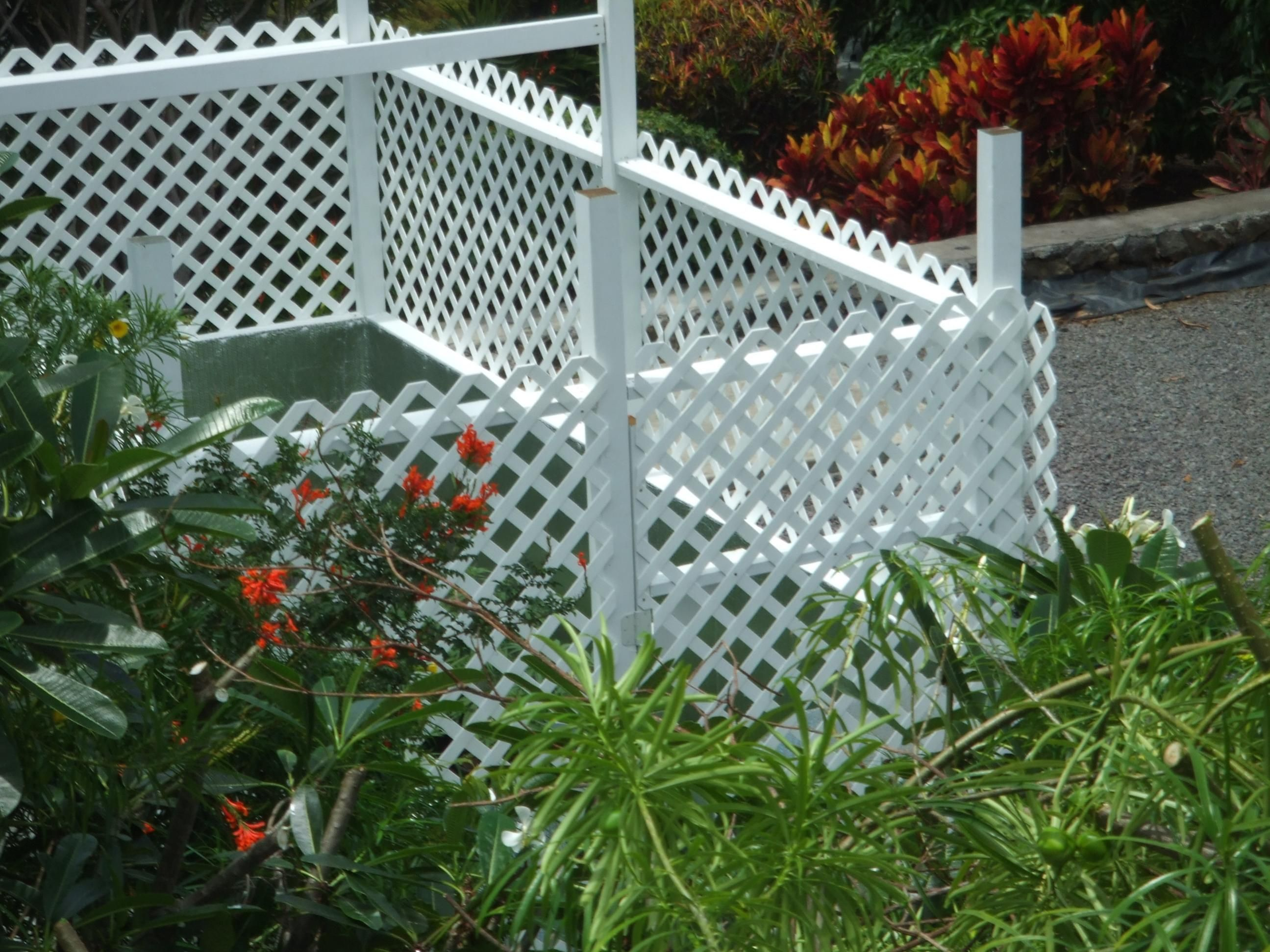 ugly but may be cheap lattice fence idea