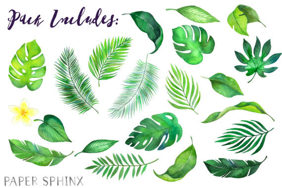 Watercolor Tropical Leaves Clipart Palm Leaves Clipart Summer