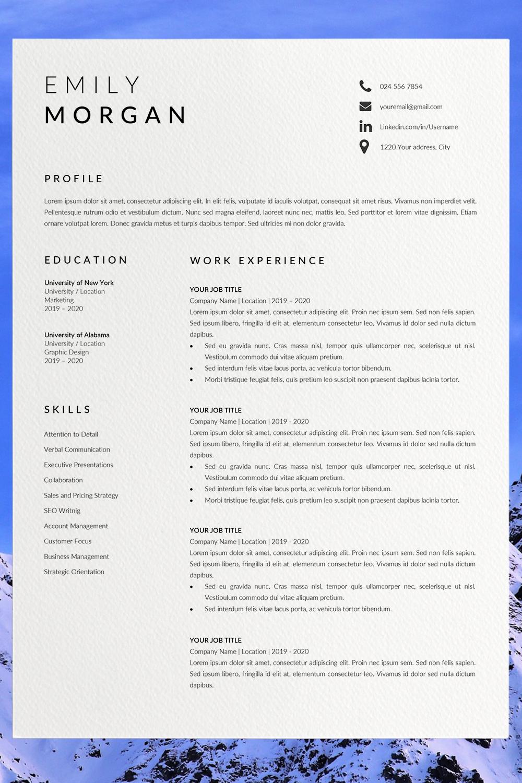 Professional Resume Design CV Template Word CV Resume