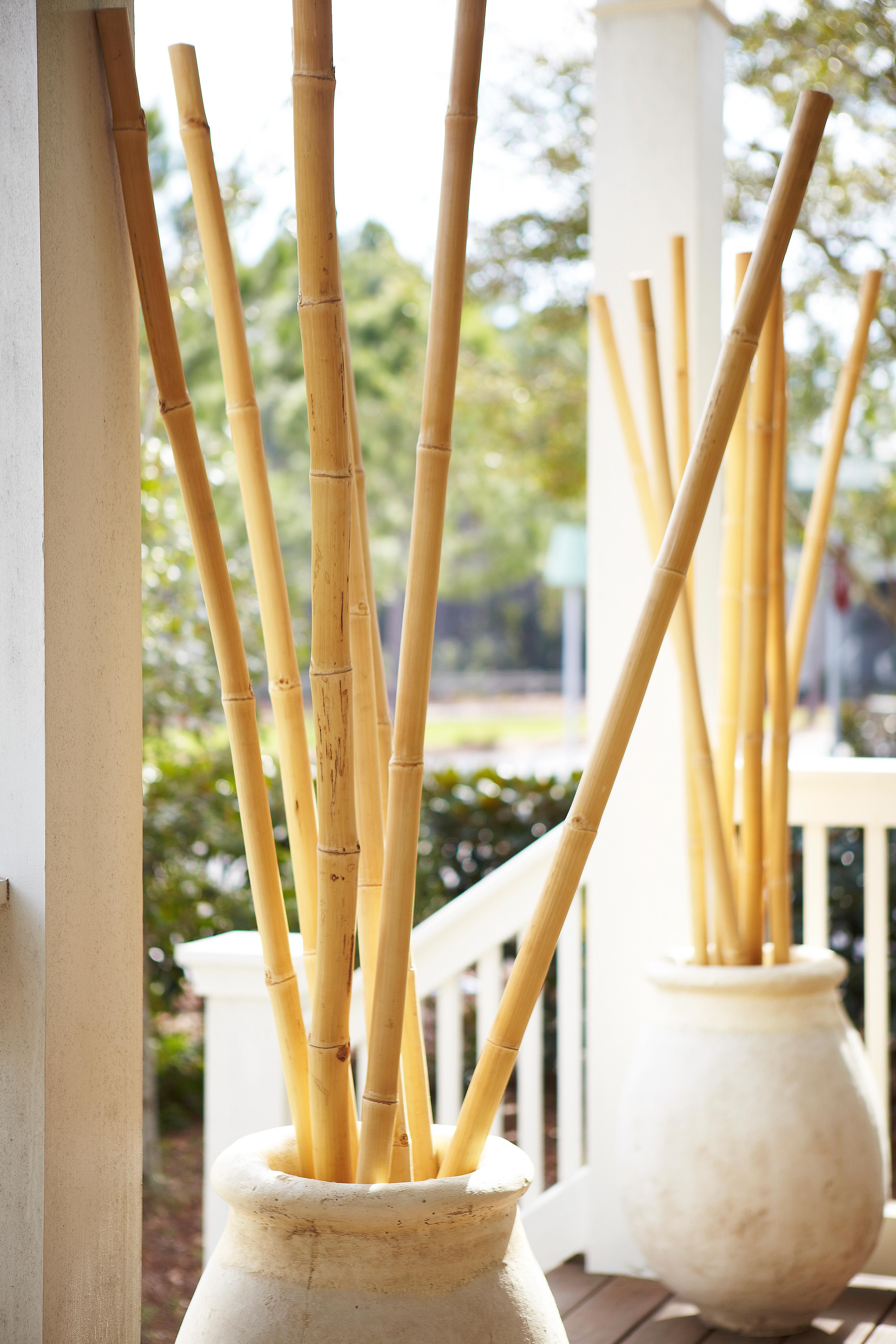 French Style Outdoor Pots with Bamboo | Beach House Project ...