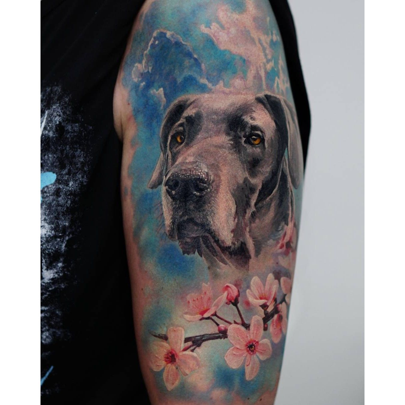 Labrador Retriever Cherry Blossom Tattoo Done By Led Coult