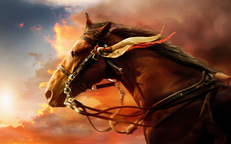 Good Wallpaper Horse Nightmare - 192d67b753b82a40ca8f569f3c3f05b7  Perfect Image Reference_934240.jpg