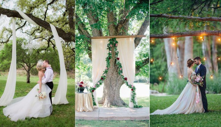 Top 20 Wedding Tree Backdrops And Arches Tree Wedding Fall Wedding Ceremony Backdrop Wedding Backdrop