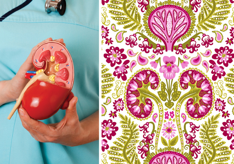 Kidney Damask from Spoonflower.  (and that other thing is a bladder?)...