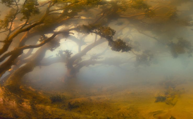 Kim Keever's submerged miniature environments-