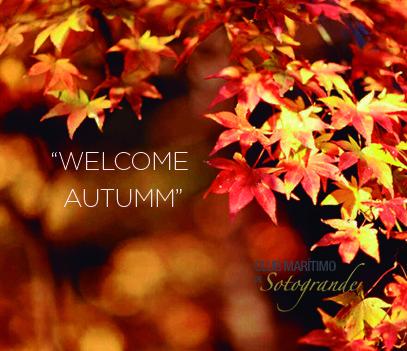 Cada estación supone una nueva oportunidad para conocer los lugares más increíbles...Este otoño te invitamos a descubrir SOTOGRANDE  #WelcomeAutumm #otoño #sotogrande