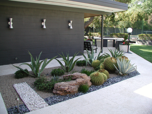 this is my idea of great landscaping. Sculptural shapes of the plants and rocks, gravel. No need to water, prune or clean up leaves/debris. Keep the weed out and run the hose over it once in a while. SOLD. -   23 mid century modern garden